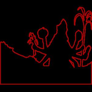 शाकम्भरी पूर्णिमा